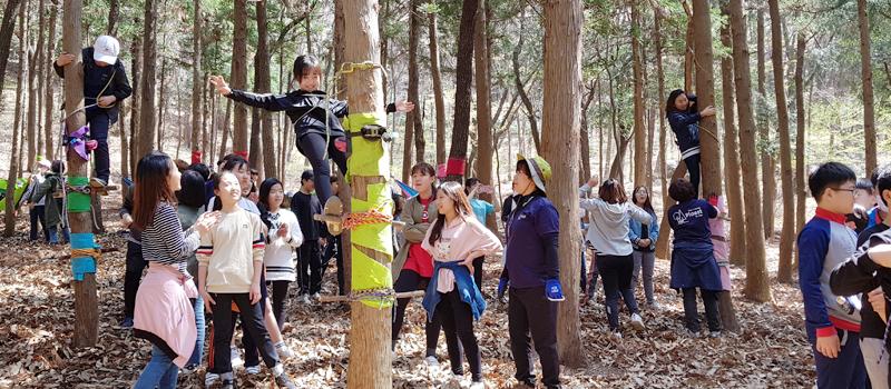 아이들이 나무기둥에 밧줄을 이용하여 매달려보고 있다